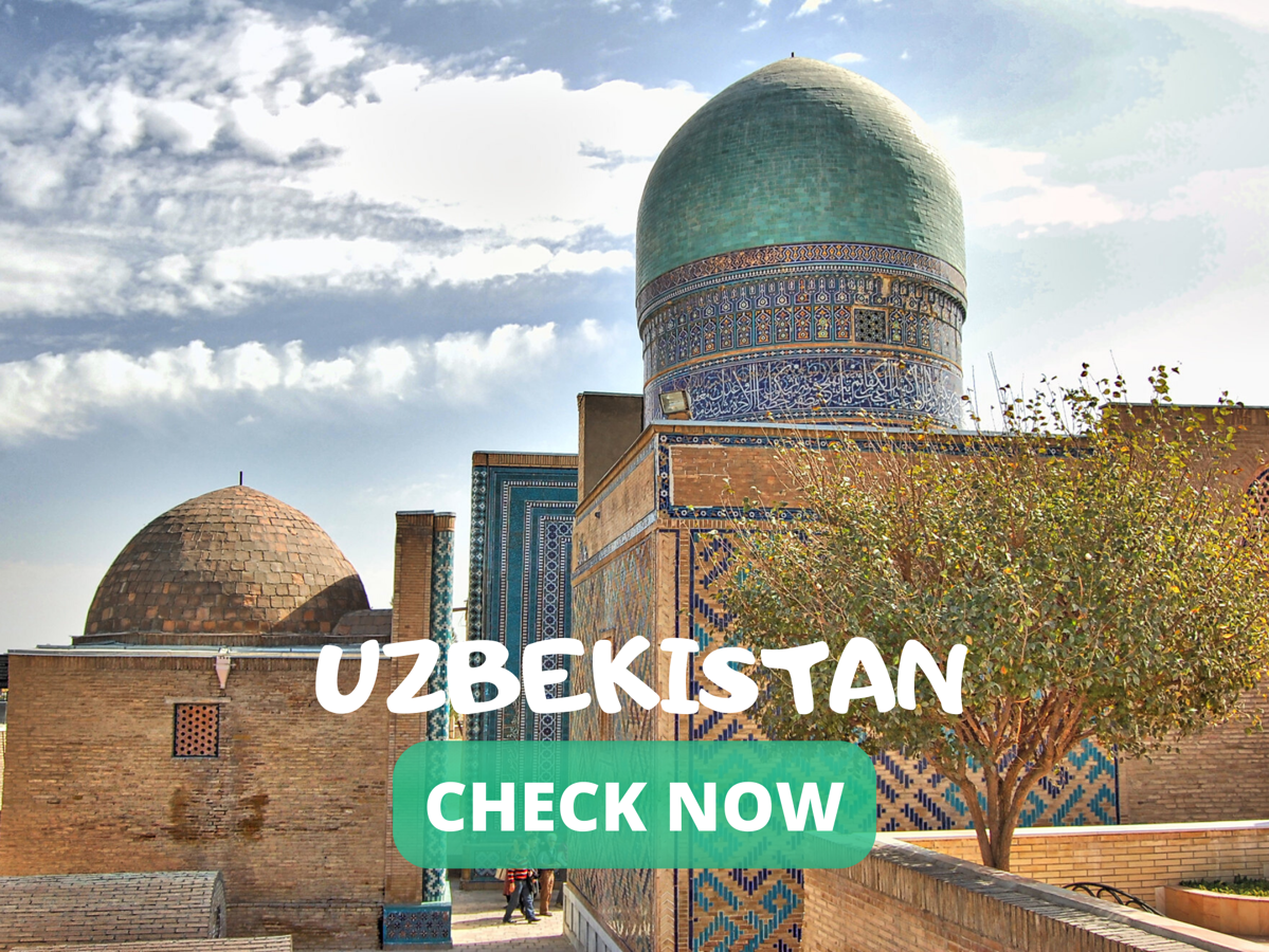 OFFICIAL ELECTRONIC VISA PORTAL OF THE REPUBLIC OF UZBEKISTAN